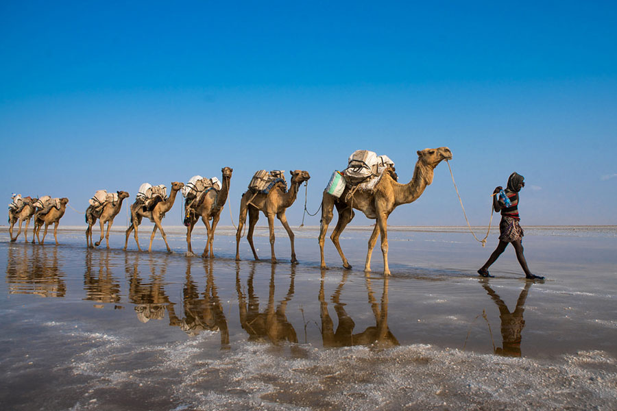 Tour to the Historic Route with Danakil Depression 22 Days